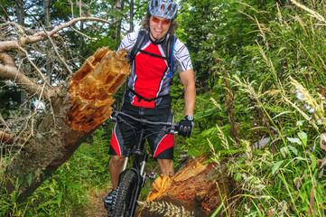 Fototapete - natürliches Hindernis beim Mountainbiken