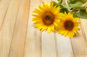 Two sunflowers on the wooden table