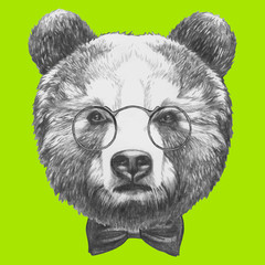 Hand drawn portrait of Bear with glasses and bow tie. Vector isolated elements.