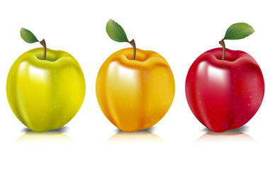 Three apples represented in three colours.