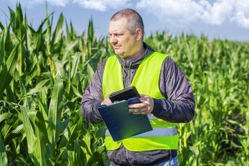 Farmer checking the corn field
