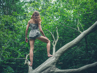 Barefoot young woman standing on fallen tree