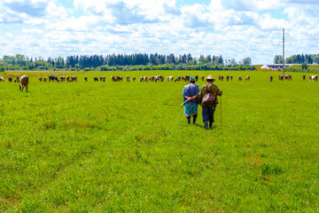 shepherds graze their cows on the field, they stand back to camera
