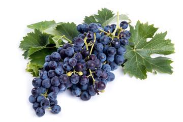 Grappolo d'uva nera isolato su sfondo bianco Fototapete