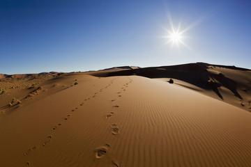 Africa,Namibia,Namib Naukluft National Park,Footprints on sand dunes at the naravlei in the namib desert