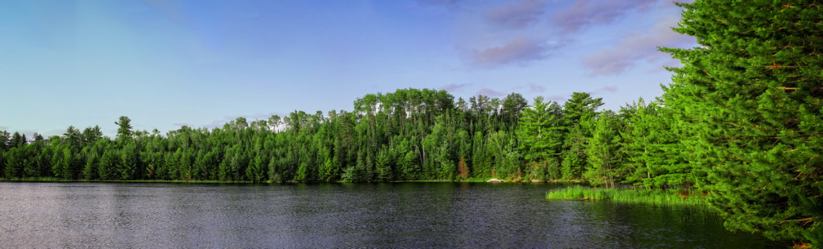 A panoramic image of Lost Lake in Voyageurs National Park, Minnesota, USA.