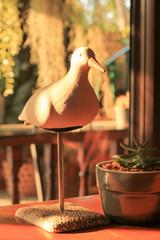 White Bird, a sun lounge, coffee shop.