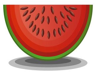 One slice of watermelon vector image