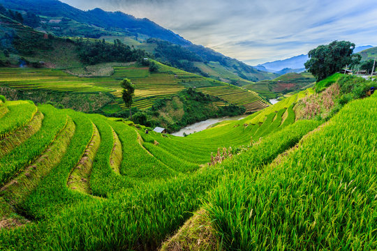 Valley Vietnam