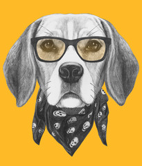 Portrait of Beagle Dog with glasses and scarf. Hand drawn illustration.
