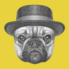 Portrait of French Bulldog with hat and glasses. Hand drawn illustration.