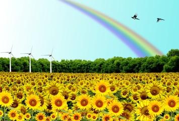Energia eolica Pulita