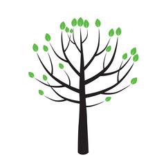 Spring Color Tree. Vector Illustration.