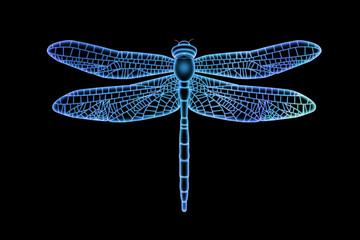 Translucent Blue Dragonfly