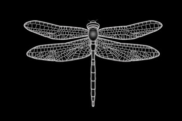 Translucent White Dragonfly
