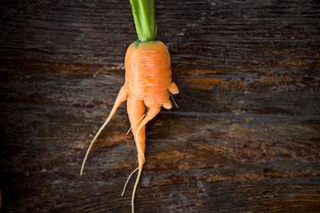 Fresh Organic Carrot of Strange Shape on Wooden Background