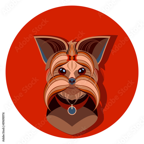 Yorkshire Terrier Dog Face Vector Illustration Stock Image And
