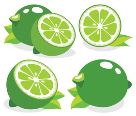 Fresh limes vector illustration