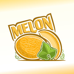 Vector illustration on the theme of melon