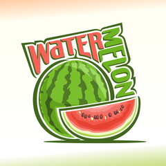 Vector illustration on the theme of watermelon