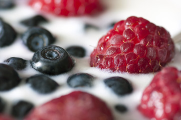 Delicious dessert made of yoghurt and ripe berries close up