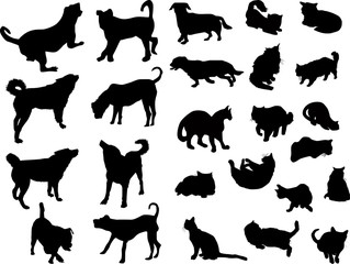 set of ten dogs and fifteen cats isolated on white