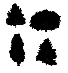 Black silhouette of different species of trees