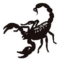Scorpion 002