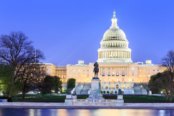 The United States Capitol building in Washington DC Wall mural