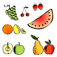 vector illustration set of a different fruits