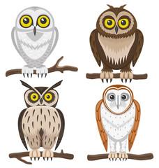 Vector set. Owls.