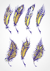 Vector set of color stylized fantastical feathers