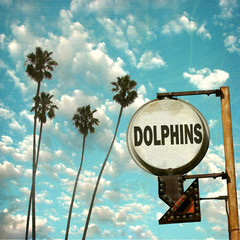 aged and worn vintage photo of dolphin sign with arrow