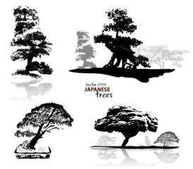 Silhouette of japanese trees black on white background, vector illustration