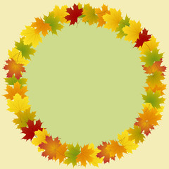 Wall Mural - frame of maple leaves round