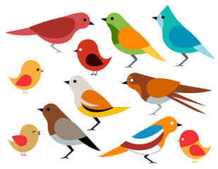 Set of different birds