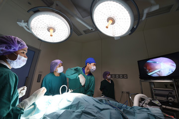group of veterinarian doctor in operation room for laparoscopic surgical