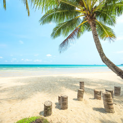 Fototapete - Coconut tree palm and tropical beach at Koh chang island in thailand