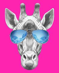 Portrait of Giraffe with mirror sunglasses. Hand drawn illustration.