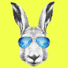 Portrait of Hare with mirror sunglasses and scarf. Hand drawn illustration.