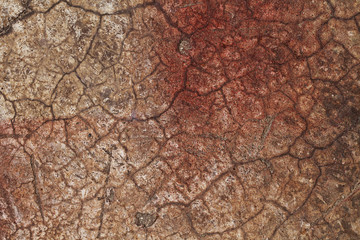 Foto auf Leinwand Texturen abstract texture wall cracked red brown