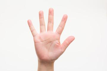 The hands of children No5 子供の手でNo5