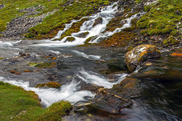 Mountain stream and meadow.
