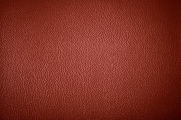 The surface of the leather