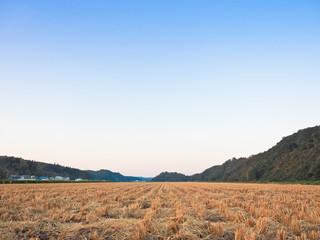 稲刈り後の田園