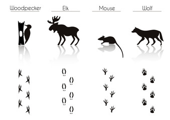 Set of Black Forest Animals and Birds Silhouettes