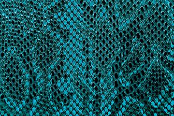Wall Mural - Snake skin background
