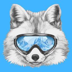 Portrait of Fox with ski goggles. Hand drawn illustration.