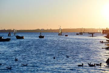 fishing boats, Baltic sea, Bay of Puck