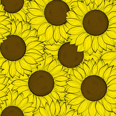 beautifulseamless background with sunflowers.